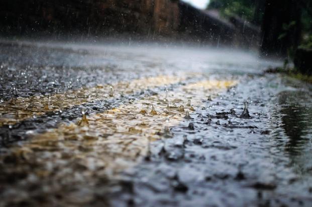 Regen bringt Segen? - Dresdner Umweltgespräche