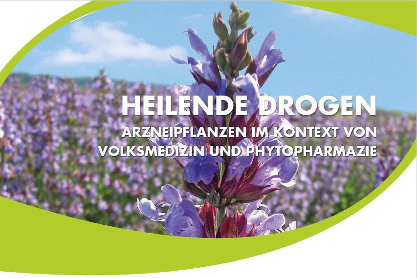 Heilende Drogen - Arzneipflanzen im Kontext von Volksmedizin und Phytopharmazie