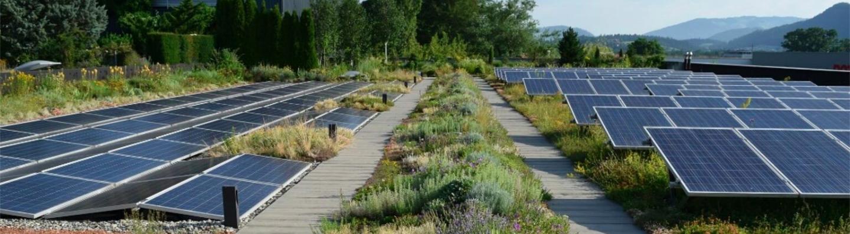 Solaranlage und Dachbegrünung