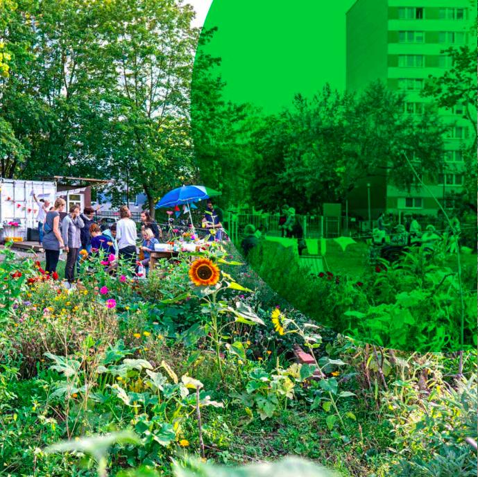 Zusammen gärtnern - Warum wir Gemeinschaftsgärten brauchen