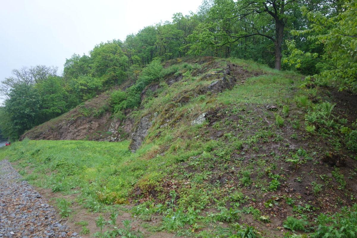 Pflegeeinsatz Steinbruch Himmelsbusch