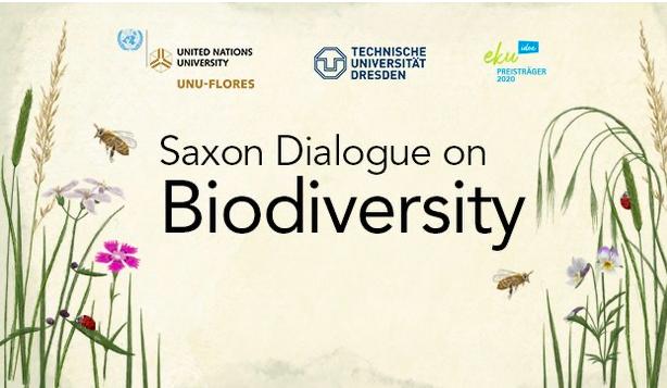 Erstes Seminar des Dialogs zur Biodiversität in Sachsen: Was ist Biodiversität und was tut sie eigentlich für uns?