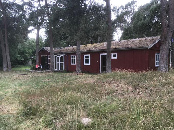 Wildnis-Retreat in Dänemark