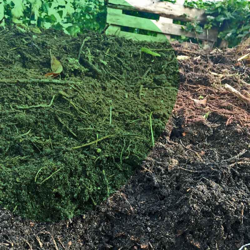 Boden gut machen - Wissenswertes über Boden, Kompost und Kompostierung